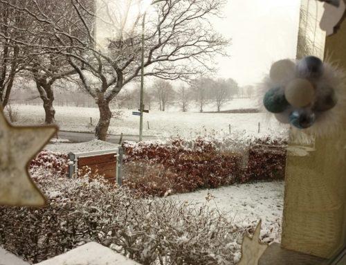 Der erste Schnee in der Eifel
